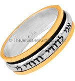 Ani LeDodi Beloved's Gold and Silver Spinning Ring