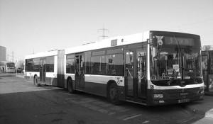 Dan-Tel-Aviv-Buses