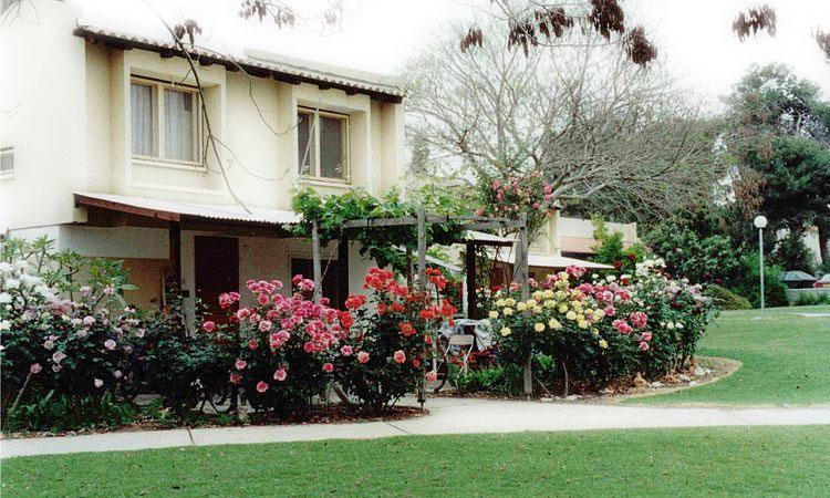 Modern Kibbutz Living