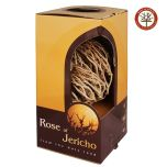 The Rose Of Jericho - Resurrection Plant from the Holy Land - Box