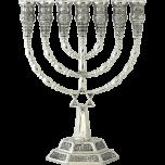 Silver Plated Star of David Menorah