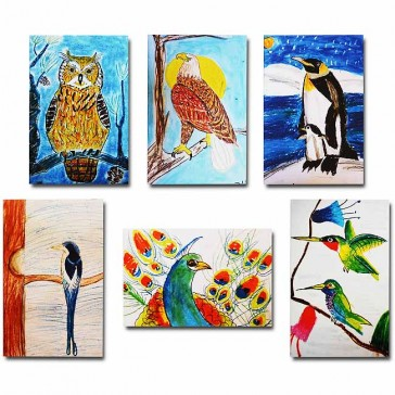 Makor HaTikva 'Bird Collection' Card Set