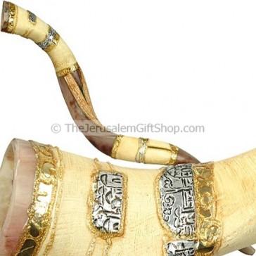 Decorated Yemenite Shofar Special