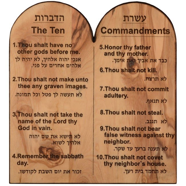 an analysis of seven commandments Analysis questions  bar of the gate and in its place painted animal farm  pigs had succeeded in reducing the principles of animalism to seven commandments.