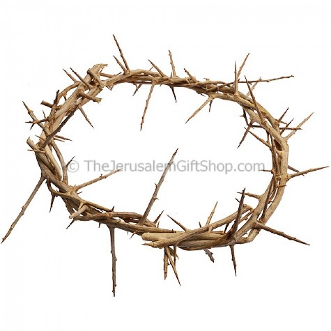 Crown Of Thorns From Jerusalem