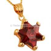 Goldfill Star of David Garnet Pendant by Marina
