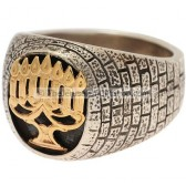 Menorah - Silver Gold Ring