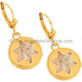 14 Carat Gold Roman Glass 'Star of David' Earrings