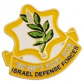 IDF Israel Defense Forces 'Tzahal' Insignia Lapel Pin Badge