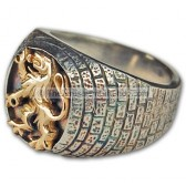 Lion of Judah Ring - Silver Gold