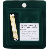 Car Mezuzah 'Shaddai' with Psalm 91 Blessing