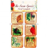 Set of 6 Magnets - Seven Species