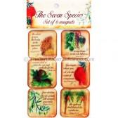 Set of 6 Magnets - Seven Species