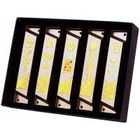 Mezuzah Cases - Set of 5 Mixed Design - Steel