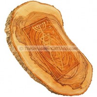 Olive Tree Slice - Grafted In