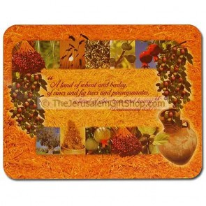 Placemat Set Scripture - Good Land - Deuteronomy 8:8