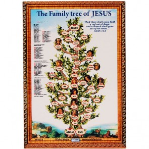 The Family Tree of Jesus on a Fridge Magnet