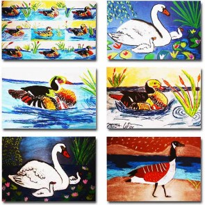 Makor HaTikva 'Wildlife' Card Set