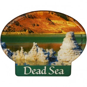 Oval 'Dead Sea' Fridge Magnet