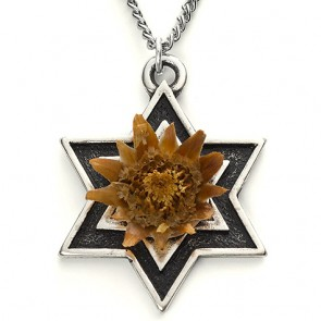 The Rose of Bethlehem Silver 'Star of David' Necklace